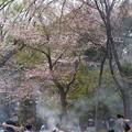 写真: 花見で煙