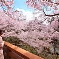 写真: 桜雲橋の上で