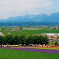 写真: '97夏 富良野線の思い出#1
