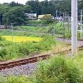 写真: 飯田線Wカーブ