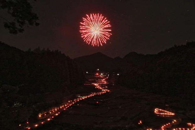 Photos: 四谷の千枚田【夜】その2