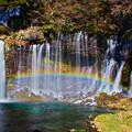 Photos: 白糸と虹