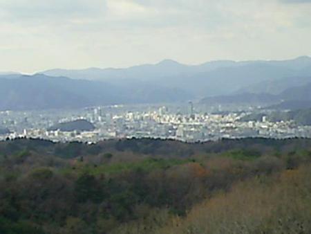 20090104-日本平山頂 (5)