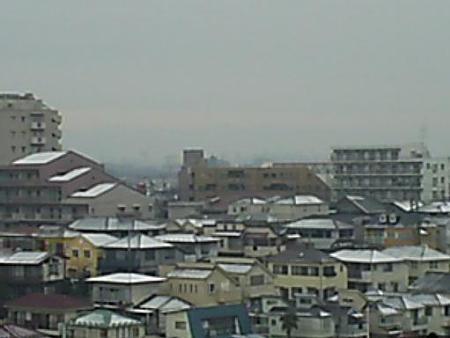 090304-雪積もらず (2)