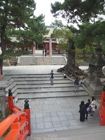 151017-住吉大社 (5)