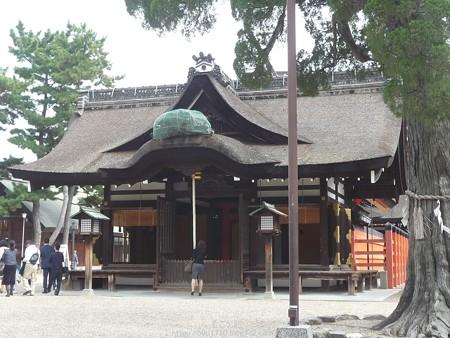 151017-住吉大社 (12)