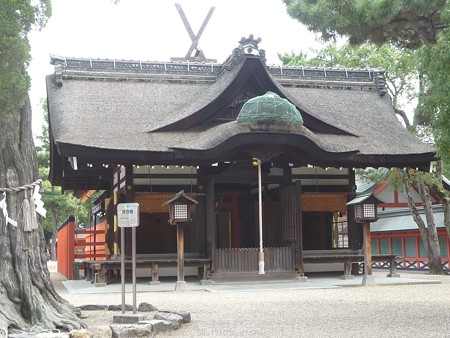 151017-住吉大社 (13)