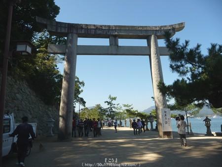 151018-宮島 (52)