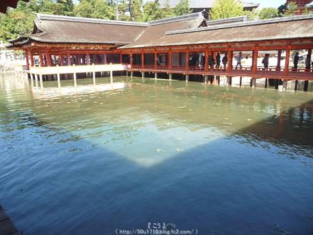 151018-宮島 (73)