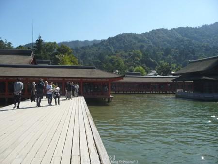 151018-宮島 (107)