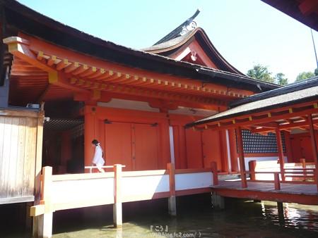 151018-宮島 (112)