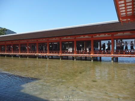 151018-宮島 (115)
