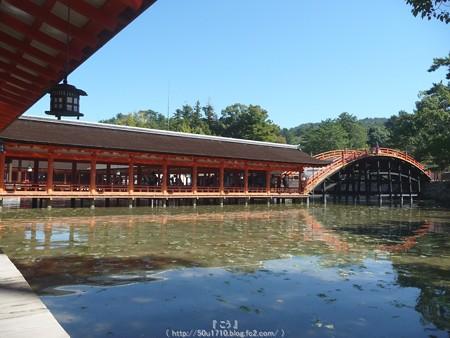 151018-宮島 (146)