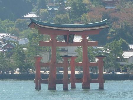 151018-宮島 (32)