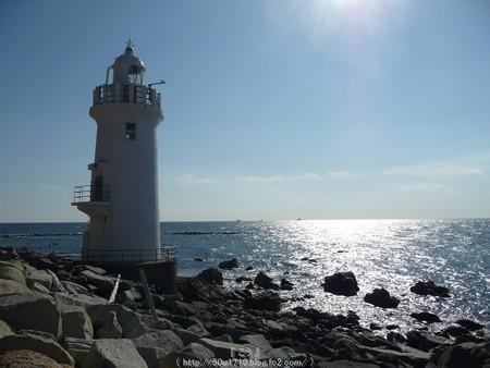 160110-伊良湖岬 (12)