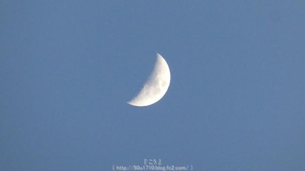 Photos: 160214-お月さん (1)