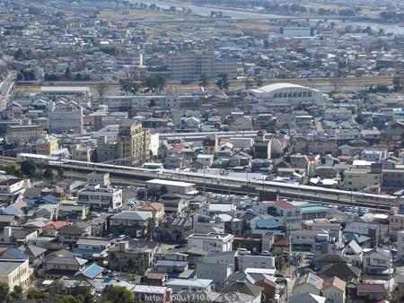 160226-松田町 河津桜 (92)