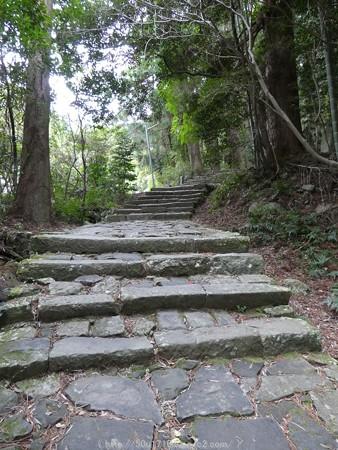 160324-熊野古道 大門坂 (37)