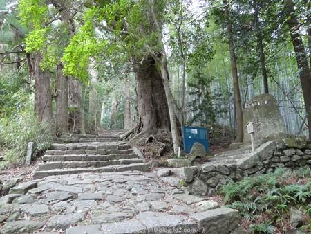 160324-熊野古道 大門坂 (38)