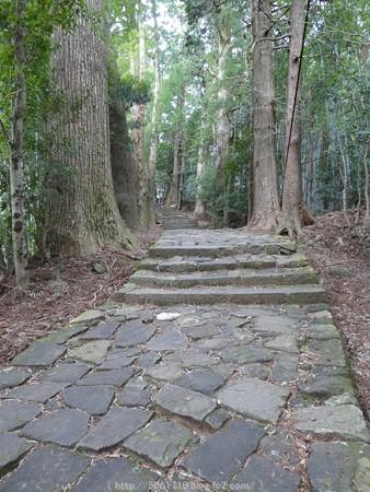160324-熊野古道 大門坂 (46)