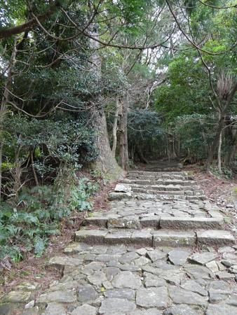 160324-熊野古道 大門坂 (54)