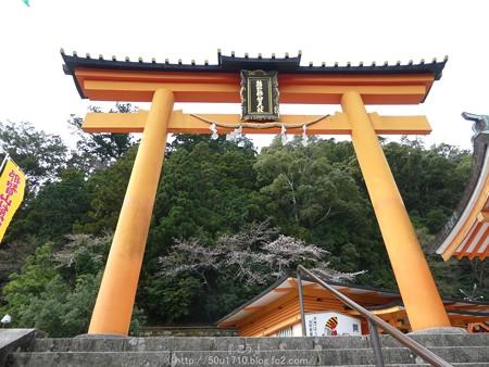 160324-熊野那智大社 (14)