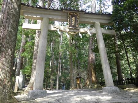 160324-那智の滝 (6)