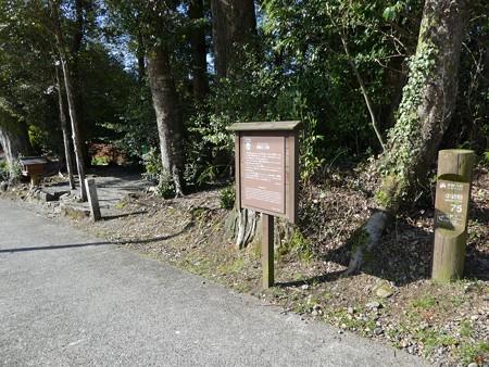 160325-熊野古道 小辺路 (69)