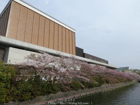 160410-THE ALFEE 京都2日目 (6)