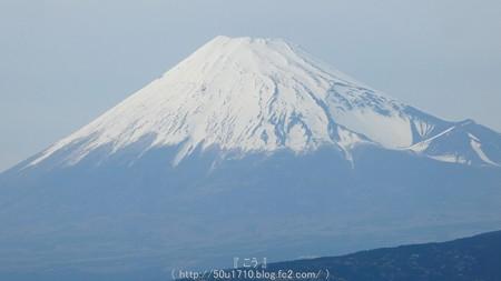 160406-東田子 (13)