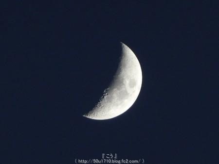 160512-お月さん (5)