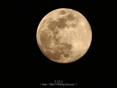 180429-お月さん (2)