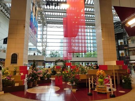 180508-趣味の園芸in横浜 会場 (2)