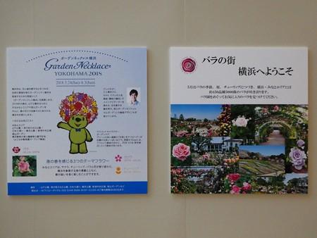 180508-趣味の園芸in横浜 会場 (5)