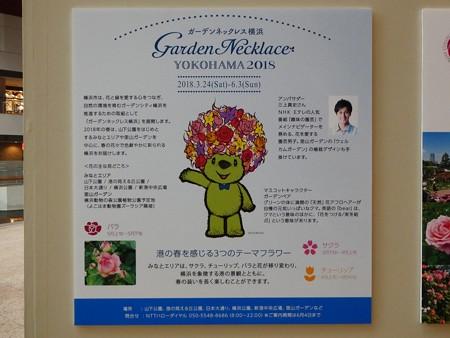 180508-趣味の園芸in横浜 会場 (6)