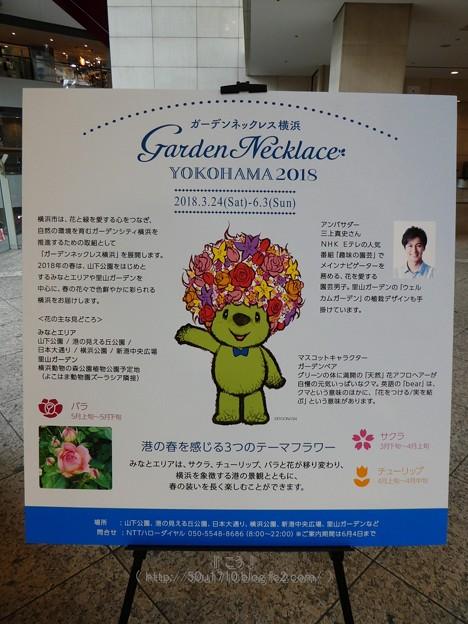 180518-みなとみらいGARDEN LIFE 2018 (27)