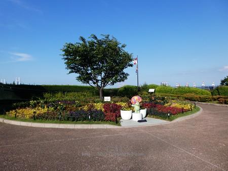 180603-港の見える丘公園 (2)