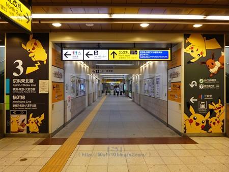 180716-ピカチュウ大量発生チュウ@桜木町駅 コンコース 3・2 (3)