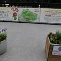 Photos: 180924-里山ガーデン (1)