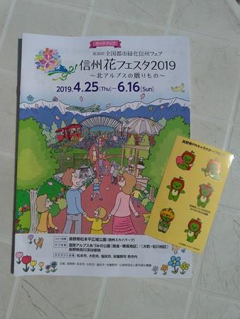 P_20190406_里山ガーデン 信州花フェスタブース (5)