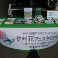 Photos: P_20190406_里山ガーデン 信州花フェスタブース (6)