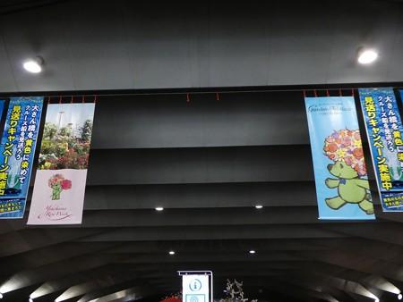 190412-フォトスポット@大桟橋 (5)