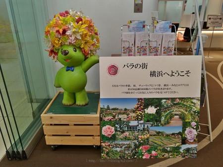 P_20190426_ガーデンベアフォトスポット@Tokyo City i (4)