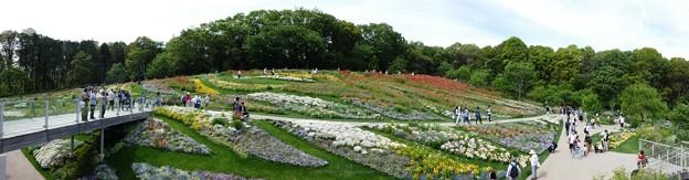 190505-里山ガーデン 大花壇 (2)