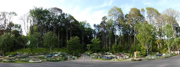 190506-里山ガーデン (15)