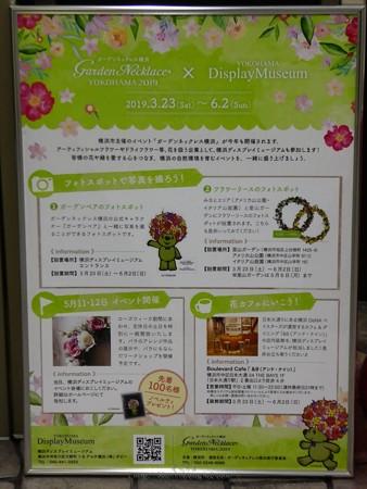 190511-ガーデンベアフォトスポット@横浜ディスプレイミュージアム (14)