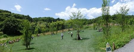 170602-里山ガーデン (87)