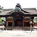 Photos: 190825-住吉大社 (13)