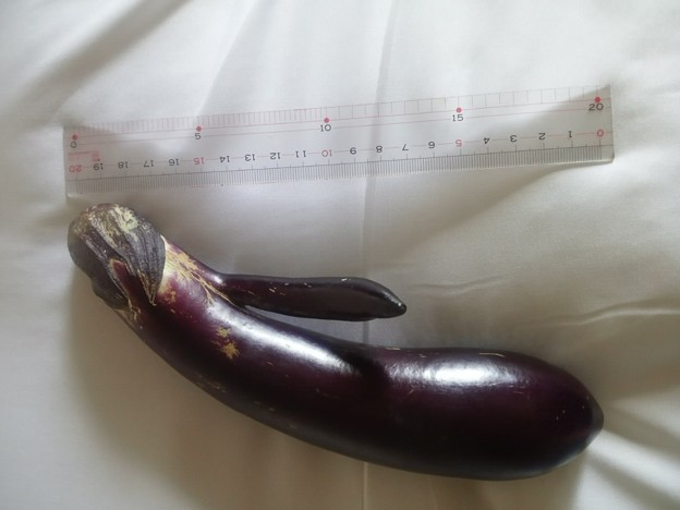 【13916号】茄子? 平成300918 #NPS1