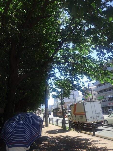 Photos: 【14697号】キャンパス 令和010521 /1